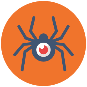 spider-crawler