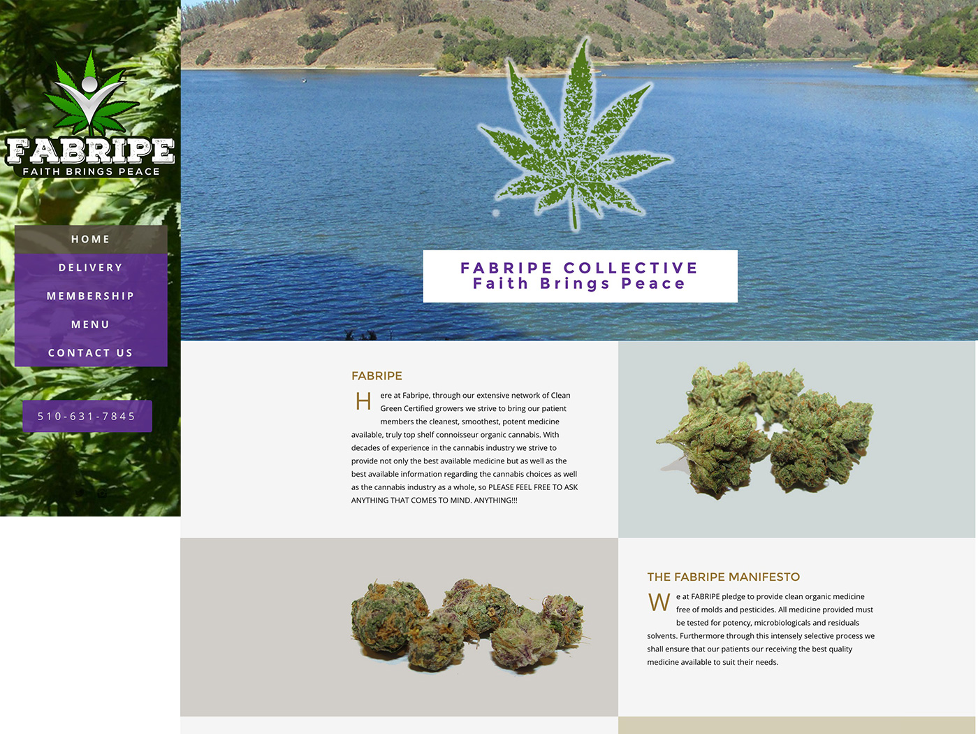 Fabripe Colective Medical Marijuana Website Design